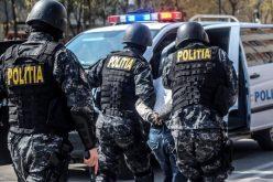VIDEO: Percheziții în Cluj, la traficanți de droguri! 100 de kilograme de canabis au ridicat anchetatorii