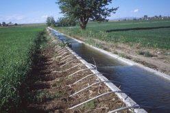 Cum s-a furat tot sistemul făcut în comunism pentru a iriga 100.000 de hectare de teren agricol