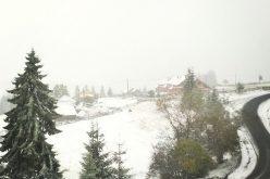VIDEO: A nins și în județul Cluj. Imagini de poveste la Mărișel