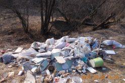 FOTO Clujean amendat cu 3.000 de lei pentru că a aruncat deșeuri în Pădurea Făget