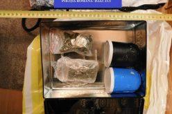 Trafic de droguri la Bistrița: 19 persoane au fost reținute în urma perchezițiilor