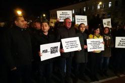 PNL CLUJ: ROMÂNIA ARE UN GUVERN DE TERORIȘTI POLITICI! MEMBRI PARTIDULUI PROTESTEAZĂ ÎN ACEASTĂ SEARĂ