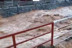 VIDEO / Urmarile codului portocaliu de vreme severă imediată