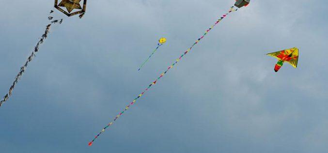 Festivalul zmeielor la Carei