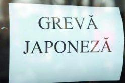 Profesorii din Timiș sunt în grevă japoneză după ce ministerul a anunțat tăierea orelor de sport