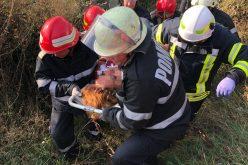 FOTO | 5 persoane rănite într-un accident rutier, o mașină a fost proiectată în afara carosabilului