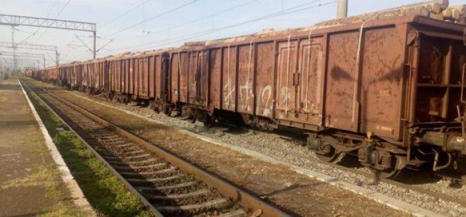 FOTO | Tren care transporta lenm fără acte, oprit de polițiști în județul Alba