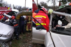FOTO | Accident cumplit în județul Mureș, șofer încarcerat și branșament de gaz rupt. Intervin pompierii militari de la Detașamentul Reghin.