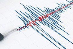 Cutremur de 4,4 pe Richter în România