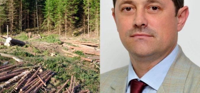 """DEPUTATUL SORIN BOTA: """"Sindicatele din silvicultură se opun protejării pădurilor din România"""""""