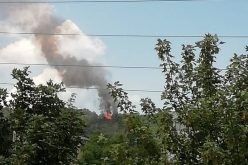 Cabană înghițită de flăcări în zona Hoia