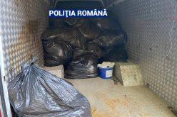 FOTO – Percheziții de amploare în țară. Vizate și persoane din județul Satu Mare