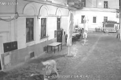 VIDEO Atacat și tâlhărit în centrul Clujului. Trei tineri au sărit pe un trecător după ce i-au pulverizat spray paralizat în față