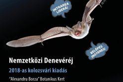 """Clujenii sunt invitați la """"Noaptea liliecilor"""""""