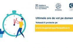 Ultimele ore de vot pe domenii în cadrul procesului Bugetare participativă Cluj-Napoca 2019