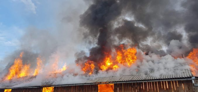 FOTO   Incendiu de proporții la o anexă gospodărească din județul Sibiu. Nu sunt semnalate victime