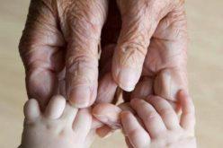 Bunicii care își îngrijesc nepoții pot primi indemnizație de 650 de lei